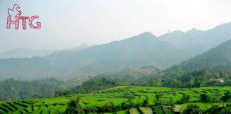 ruông bậc thang Điện Biên