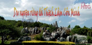 Rừng đá Thạch Lâm