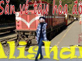 Săn vé tàu hỏa Alishan xuyên rừng Đài Loan